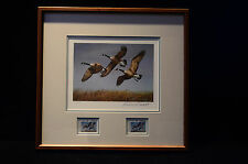 1982 North Dakota Duck Stamp print and Stamp Framed #9721 by Richard Plasschaert