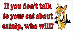 If you don't talk to your cat about catnip, who will? Funny Bumper Sticker