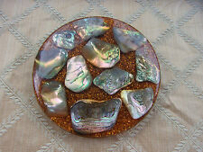 Vintage Abalone Shell Trivet HotPlate Reno Nevada