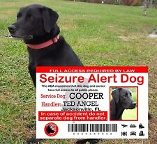USA Service Dog ID Card, Seizure Alert Service Dog ID, Service Animal ADA Card,