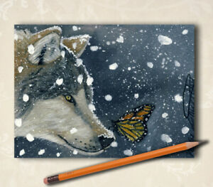 """Original ACEO ATC Wolf Butterfly Animal """"Look what I found"""" By V Kenworthy"""