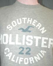 Hollister Adult Small Gray Distressed T-Shirt (S Surf Surfing USC California)