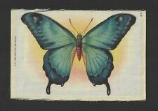 1910's S8 Tobacco Silk Premium - Butterflies Series - Large Format - L4