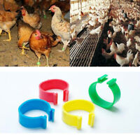 100pcs Numbered Spiral Chicken Leg Ring Identification Rings Poultry Mark Clip