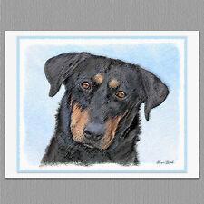 6 Beauceron Dog Blank Art Note Greeting Cards