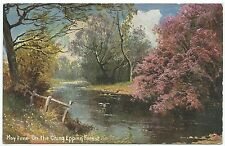 ESSEX - MAY TIME on the CHING, EPPING FOREST  Edwardian Postcard