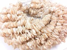 """1 Strand Pearl Smooth Shell Chips Nuggets 5-8mm Gemstone Loose Beads 15""""inch"""