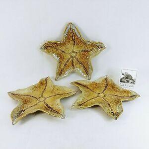 "Starfish Serving Plates Sea Life Detailed Set of 3 Ceramic 10"""