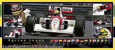 Ayrton Senna  82cmx36mm panoramic photo collage Ltd ed of 100 worldwide
