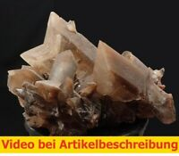 7347 Gypsum Selenite Twin ca 6*8*6 cm Ebensee Austria 1988 MOVIE