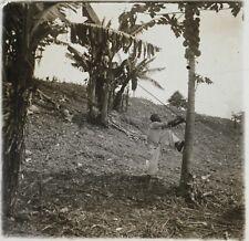 Afrique Colonisation FrancePhoto NC5 Plaque de verre Stereo Vintage 1910