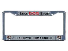 Lagotto Romagnolo Dog Best Dog Ever Chrome Metal License Plate Frame Tag Border