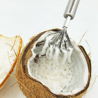 Stainless Kitchen Fruit Tools Coconut Shaver Kitchen Fish Clean Scales Tool~QA