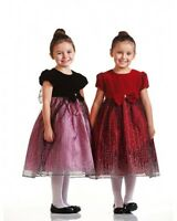 Precious Velvet Top Sparkle Skirt Holiday Flower Girl Dress Crayon Kids USA