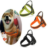 Truelove Dog Puppy Harness Reflective Comfort Air Mesh Adjustable 3M Scotchlite