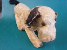 Antique Rare Mohair, Straw-filled Dog, Glass Eyes,Black Ears & Tail C.1920'S
