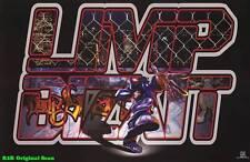 "MUSIC POSTER~Limp Bizkit Logo Fred Durst Album 23x35"" Group Print Original New~"