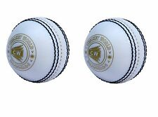 """2X CW INCREDIBLE /PVC /POLYSOFT /SPIN /PRACTICE CRICKET BALL """"ALL WHITE"""""""