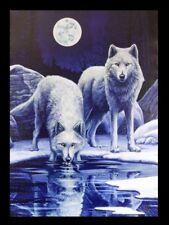 Kleine Leinwand mit Wölfen - Warriors of Winter Lisa Parker - Kunstdruck Bild