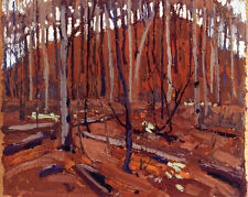 Northern Landscape   by Tom Thomson  Giclee Canvas Print Repro