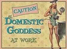 Domestic Goddess At Work funny fridge magnet   (og)
