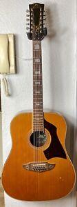 Eko Rio Bravo 12 string vintage acoustic guitar. Made in Italy 70's