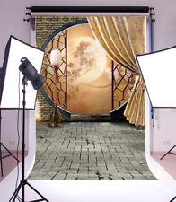 Photography Background Props Indoor Scene Vinyl Chinese Style Studio Backdrop