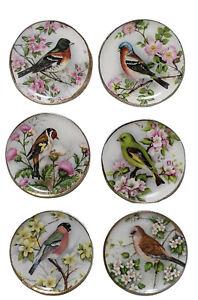 Miniature Dollhouse Set of 6 Songbird Bird Plates Handemade USA 1:12 Scale New