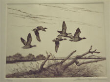 David Hagerbaumer  Original  Large  Etching  Pacific  Brant  Geese   HAND SIGNED