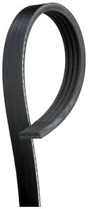Serpentine Belt  ACDelco Professional  4K358