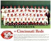 1969 Cincinnati Reds Bench Rose Team Picture Color 8 X 10 Photo Picture