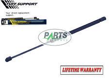 Volkswagen Passat 1998 1999 2000 2001 Tuff Support Hood Shock 3B0823359B