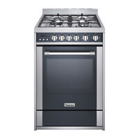 "Magic Chef MCSRG24S 24""  2.7 cu. ft. Gas Range Convection Stainless Steel"