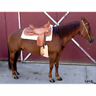 Toklat Cool Back Cinch Cover