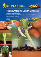Veredelungsset für Gurken & Melonen Feigenblattkürbis Kiepenkerl 2714