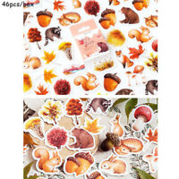 Stationary Scrapbooking  Paper Sticker Diary Label Fall Squirrel Stickers