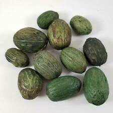 11 Fake Fruit Dates Artificial Food Green Decor Set Lot Set Figs Nuts