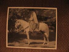 """Saki"" #6248 Arabian Horse Hall of Fame Jack Tone Ranch The Home of Fadjur Photo"