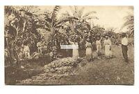 Trinidad - Reaping Bananas - old Tuck postcard No. B12
