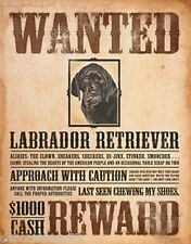Wanted Labrador Retriever funny novelty chien large metal tin sign pet cadeau 1148