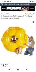 """Jumbo Inflatable Ball Crawl inside 51""""."""