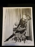 Julie Newmar Catwoman Batman Selina Kyle DC comics Original 8x10 B/W Photo VTG