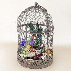 O25 Taxidermy Oddities Curiosities Birdcage Gouldian Finch Hanging Bird Display