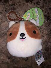 """Squishmallow-Reginald the Brown & White Puppy Dog 3.5"""" Clip-NWT & SUPER CUTE!!"""