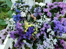 New listing Dried Statice Sinuata Purple Pink White Yellow Mix 20 Stems Wildflowers Weddings