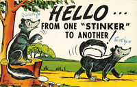 Postcard Hello From One Stinker To Another Posted 1961