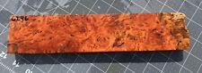 Hawaiian Eucalyptus Robusta Burl Knife Scale Blank! Beautiful Burl! #6246