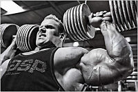 Jay Cutler Bodybuilding Muscle Gym Large Poster Art Print 91x61 cm