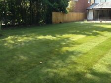 High Quality Turf: Fresh / Real Garden Lawn Grass Rolls 25 sq. Metres.