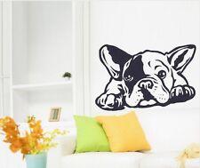French Bulldog Hunde Wallsticker Wallpaper Wand Schmuck 38x 60 cm Wandtattoo